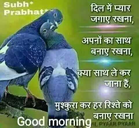 🌞Good Morning🌞 - Subh * Prabhai दिल में प्यार जगाए रखना , अपनों का साथ बनाए रखना , क्या साथ ले कर जाना हैं , मुश्कुरा कर हर रिश्ते को Good morning बनाए रखना VAAR WAAR - ShareChat