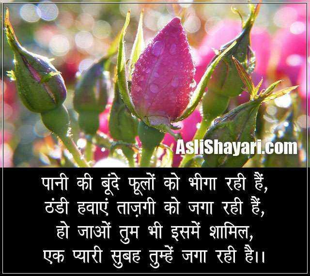 🌞Good Morning🌞 - AsliShayari . com पानी की बूंदे फूलों को भीगा रही हैं , ठंडी हवाएं ताज़गी को जगा रही हैं , हो जाओं तुम भी इसमें शामिल , एक प्यारी सुबह तुम्हें जगा रही है । । - ShareChat