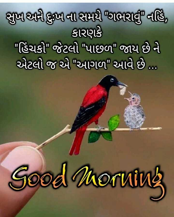 🌅 Good Morning - ShareChat