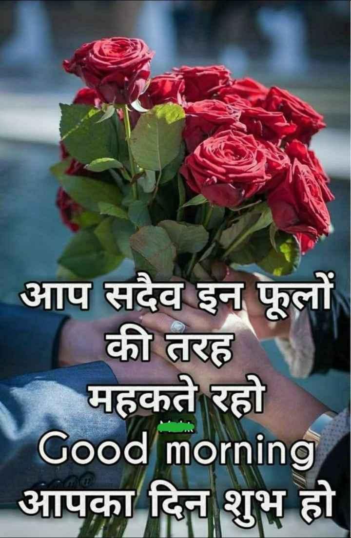 🌞 Good Morning🌞 - आप सदैव इन फूलों की तरह महकते रहो Good morning आपका दिन शुभ हो - ShareChat