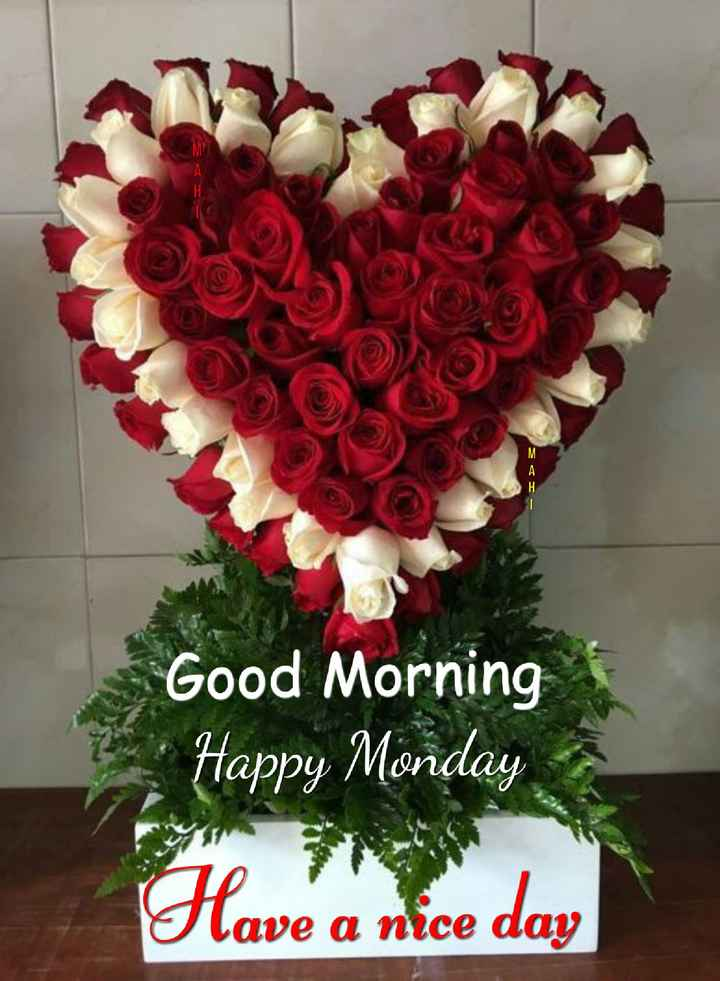 🌞 Good Morning🌞 - Good Morning Happy Monday Have a nice day - ShareChat