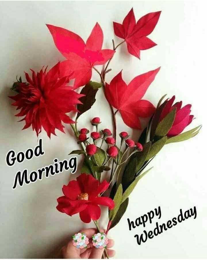 🌞Good Morning🌞 - Good Morning happy Wednesday - ShareChat