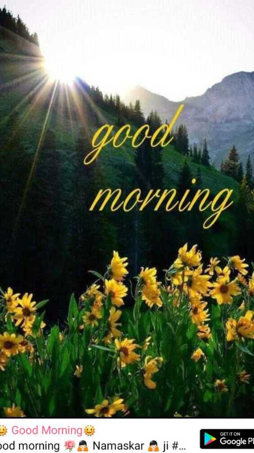 🌞 Good Morning🌞 - good morning B Good Morning jod morning GET IT ON Google Pl Namaskar ji # . . . - ShareChat