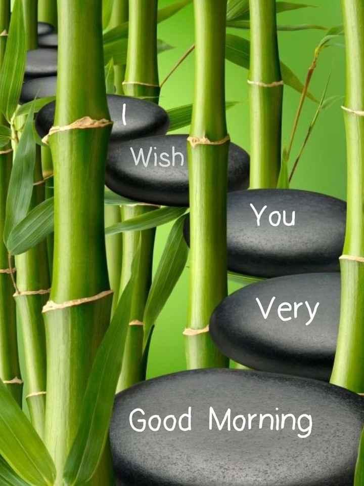 🌞Good Morning🌞 - Wish You Very Good Morning - ShareChat