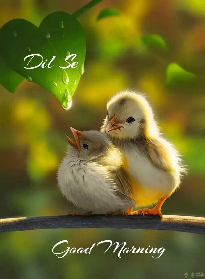 🌞 Good Morning🌞 - Dil Se Good Morning - ShareChat