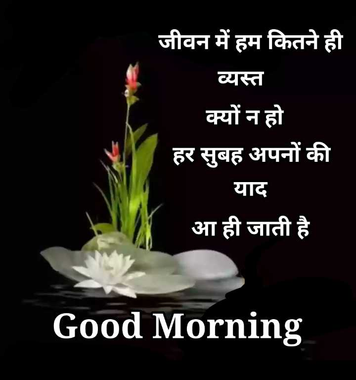 🌞 Good Morning🌞 - जीवन में हम कितने ही व्यस्त क्यों न हो हर सुबह अपनों की याद आ ही जाती है Good Morning - ShareChat