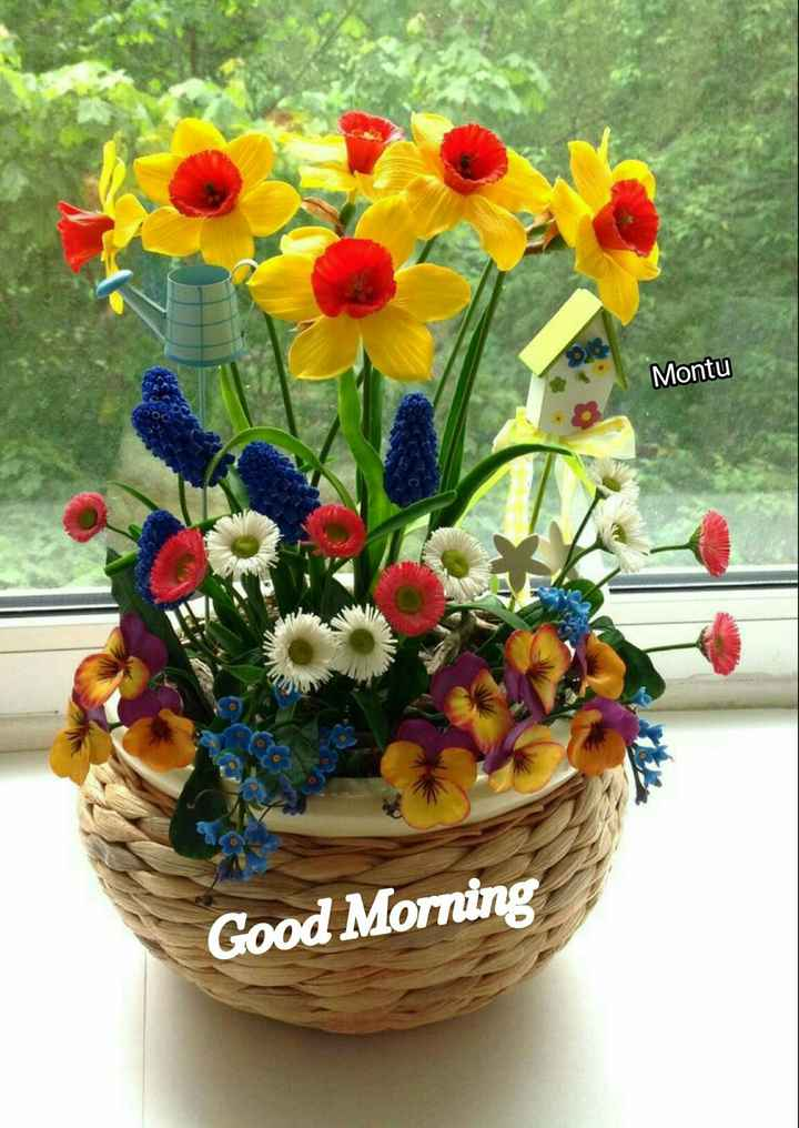 🌞Good Morning🌞 - Montu Good Morning - ShareChat