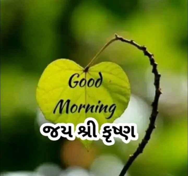 🌅 Good Morning - Good Morning જય શ્રીકૃષ્ણ - ShareChat