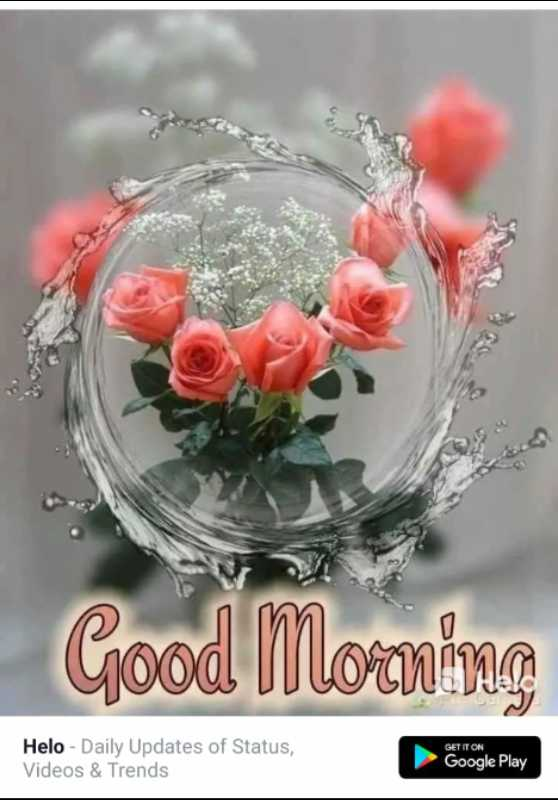 🌞 Good Morning🌞 - Good Morning GET IT ON - Daily Updates of Status , Videos & Trends Google Play - ShareChat