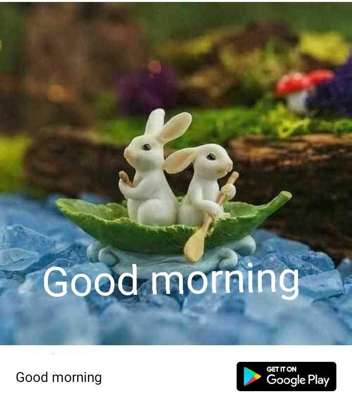 🌞Good Morning🌞 - Good morning Good morning GET IT ON Google Play - ShareChat