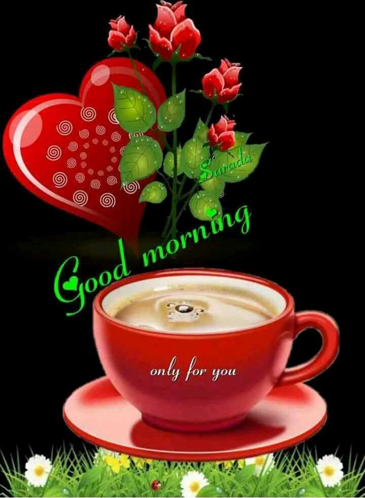 🌞Good Morning🌞 - UCLCLCL d morning only for you - ShareChat