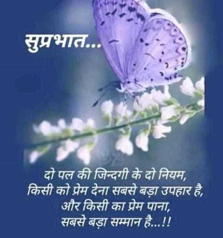 🌞 Good Morning🌞 - सुप्रभात . . . दो पल की जिन्दगी के दो नियम , किसी को प्रेम देना सबसे बड़ा उपहार है , और किसी का प्रेम पाना , सबसे बड़ा सम्मान है . . . ! ! - ShareChat