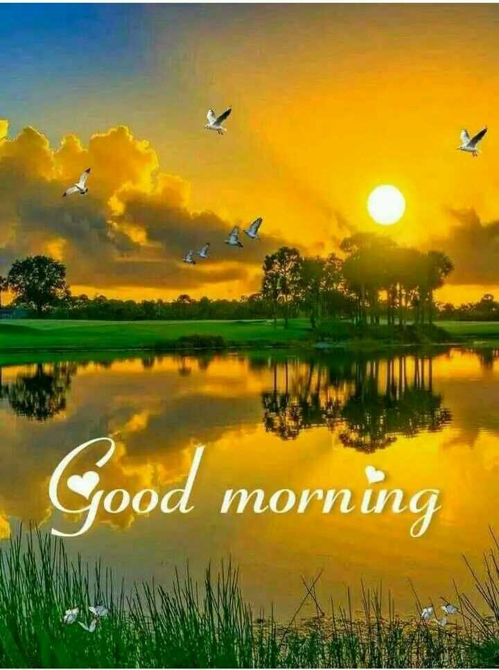🌞Good Morning🌞 - Good morning - ShareChat