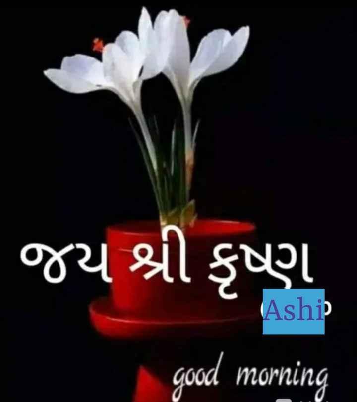 🌅 Good Morning - જય શ્રી કૃષ્ણ Aship good morning - ShareChat