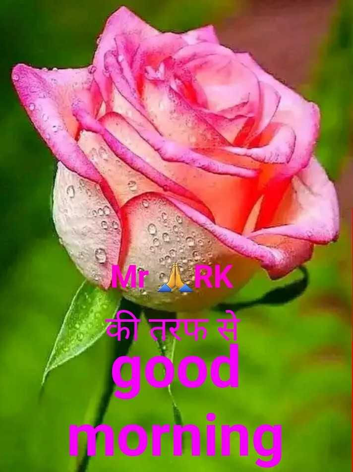 🌞 Good Morning🌞 - OM JERK की तरफ से good morning - ShareChat