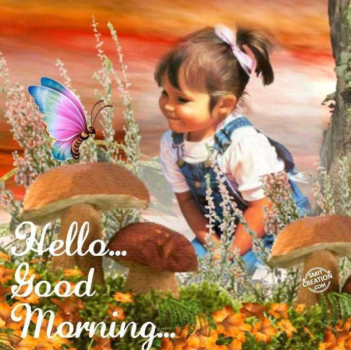 🌞 Good Morning🌞 - Hello . Good SMIT CREATION . COM Morning . o . S - ShareChat