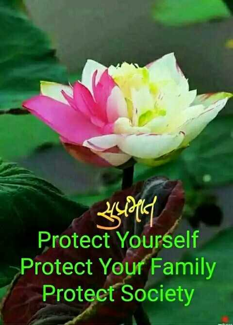 🌞 Good Morning🌞 - schorld Protect Yourself Protect Your Family Protect Society - ShareChat