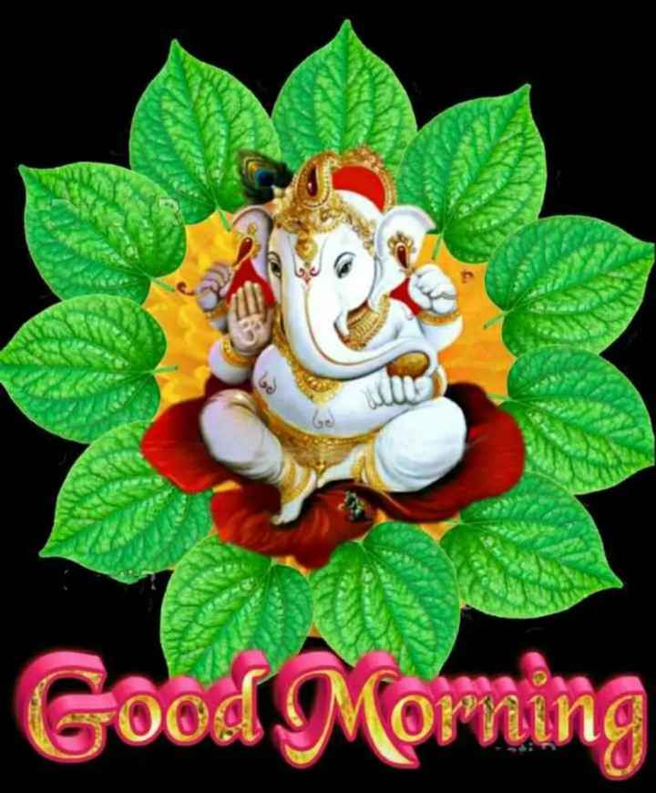 🌞 Good Morning🌞 - Good Morning - ShareChat
