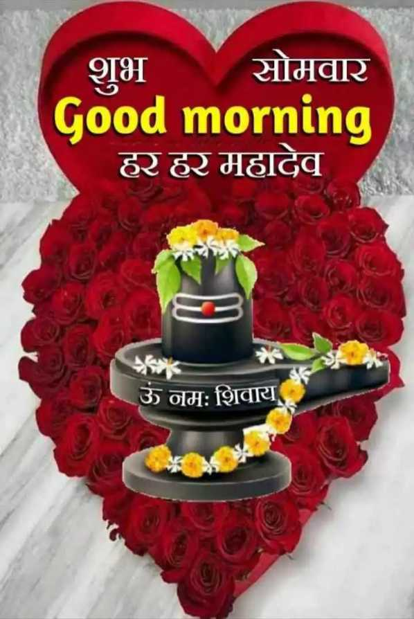 🌞 Good Morning🌞 - शुभ सोमवार Good morning हर हर महादेव ऊं नम : शिवाय - ShareChat
