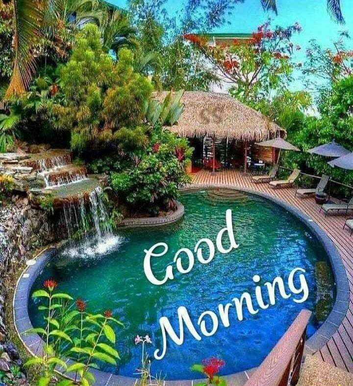 Good Morning - Good * Moming - ShareChat