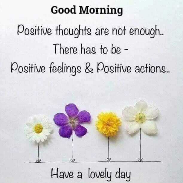 🌞Good Morning🌞 - Good Morning Positive thoughts are not enough . . There has to be - Positive feelings & Positive actions . . Have a lovely day - ShareChat