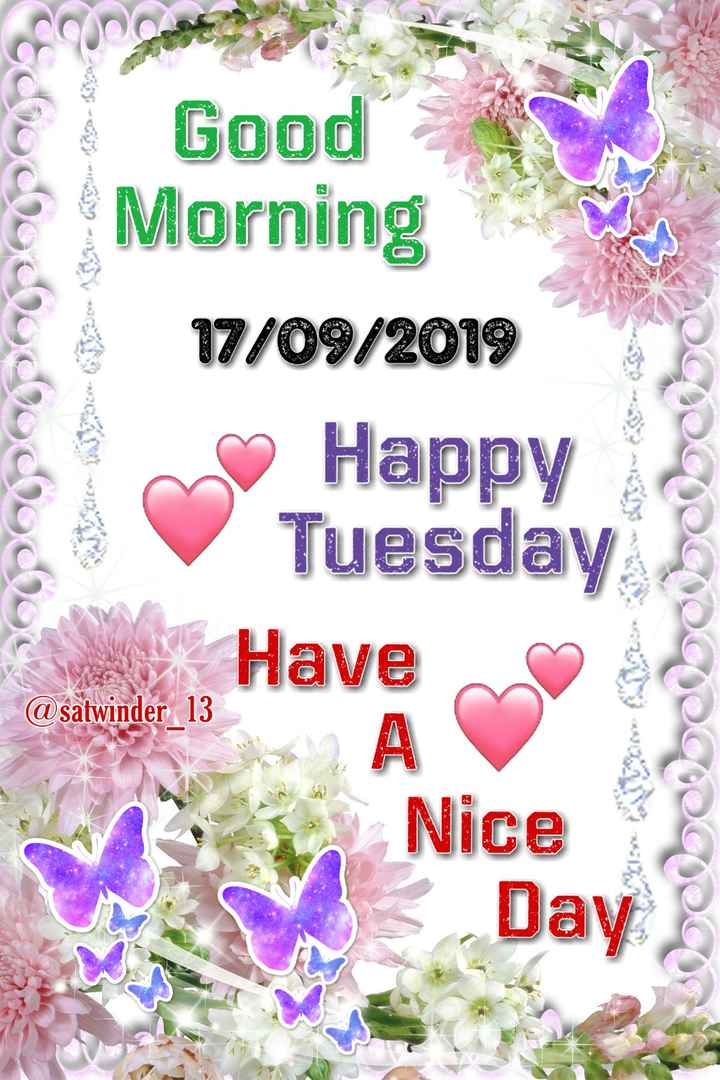 🌞 Good Morning🌞 - @ chocollo Good Morning 17 / 09 / 2019 Happy Tuesday Have PODCCCCCC @ satwinder 13 Nice Day - ShareChat