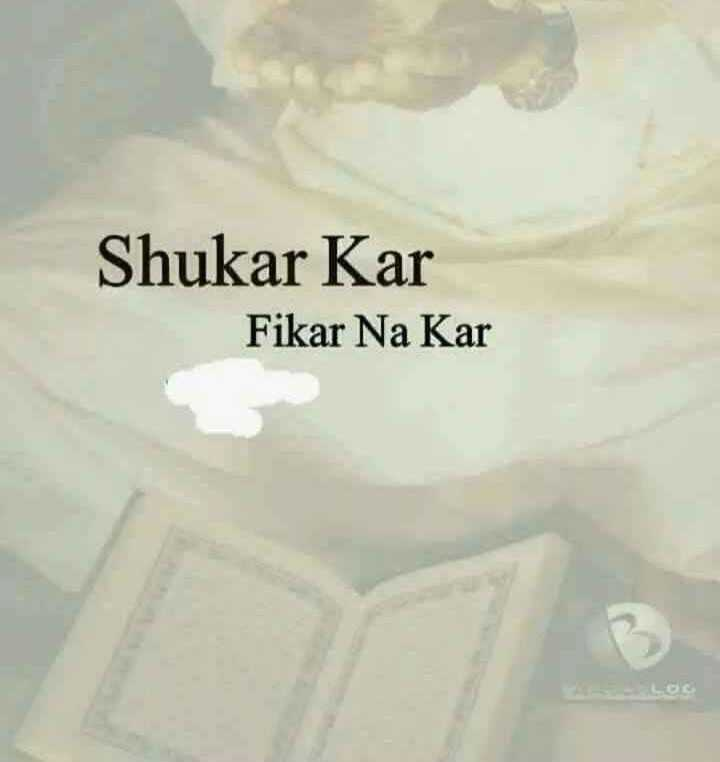 🌞 Good Morning🌞 - Shukar Kar Fikar Na Kar - ShareChat