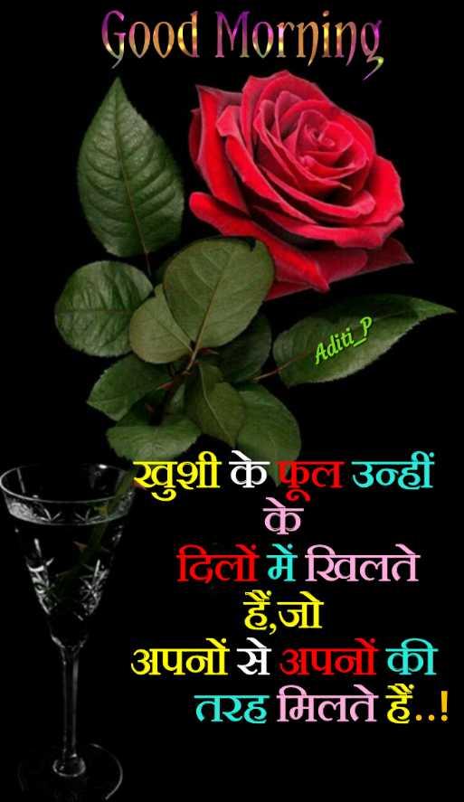 🌞 Good Morning🌞 - Good Morning Aditi P खुशी के फूल उन्हीं के दिलों में खिलते हैं , जो अपनों से अपनों की तरह मिलते हैं . . ! - ShareChat