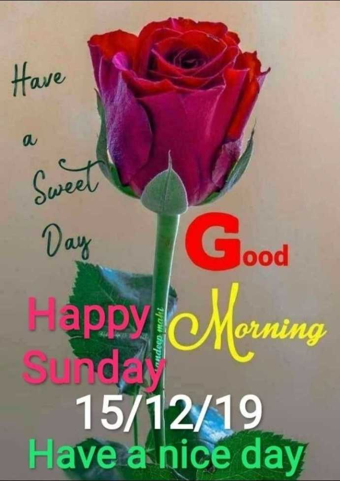🌅 Good Morning - Have Sweet Day Good Happy Morning Sunday 15 / 12 / 19 Have a nice day - ShareChat