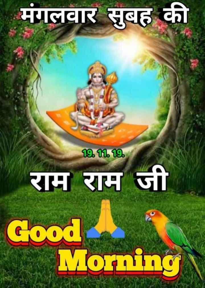 🌞 Good Morning🌞 - मंगलवार सुबह की 19 . 11 . 19 राम राम जी Good Morning - ShareChat