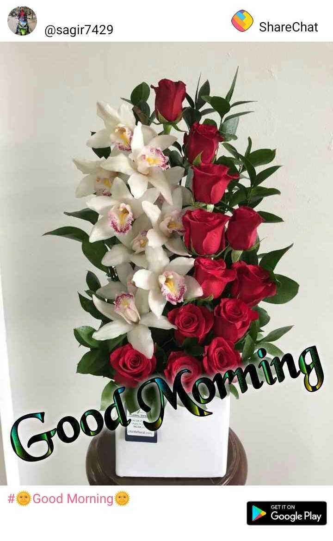 🌞Good Morning🌞 - @ sagir7429 ShareChat Good # Good Morning GET IT ON Google Play - ShareChat
