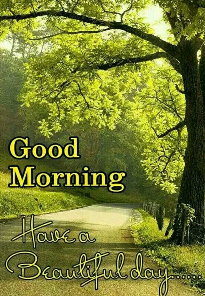 🌞 Good Morning🌞 - Good Morning Have a iul day . . - ShareChat