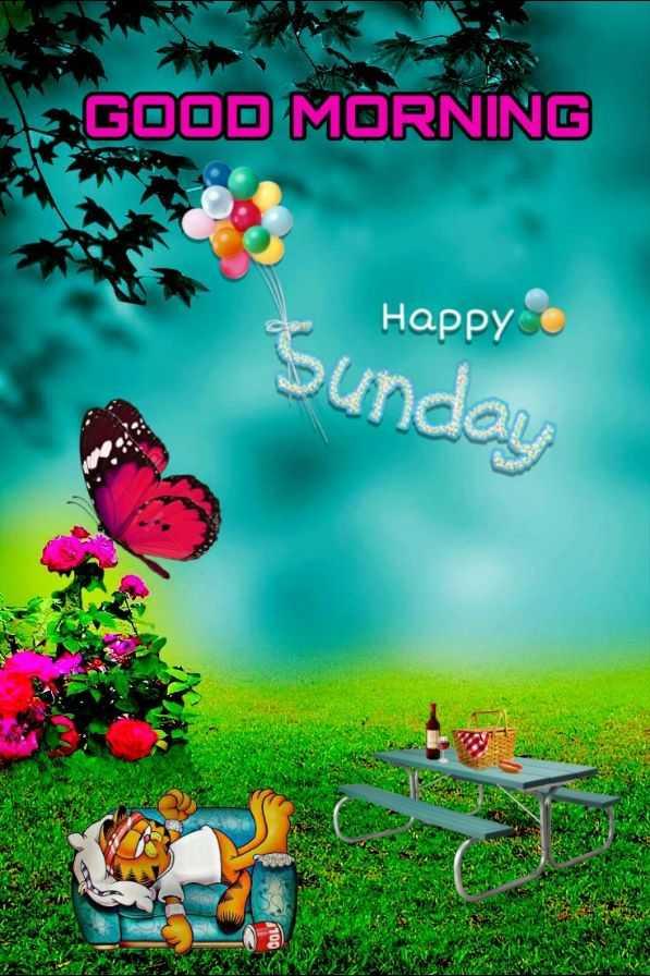 🌅 Good Morning - GOOD MORNING Happy Sunday - ShareChat