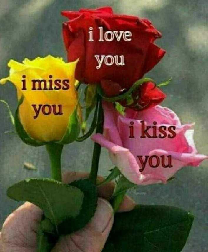 🌞 Good Morning🌞 - i love you i miss you i kiss you - ShareChat