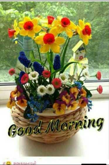 🌅 Good Morning - Good Morning ભલામનાઓ . - ShareChat