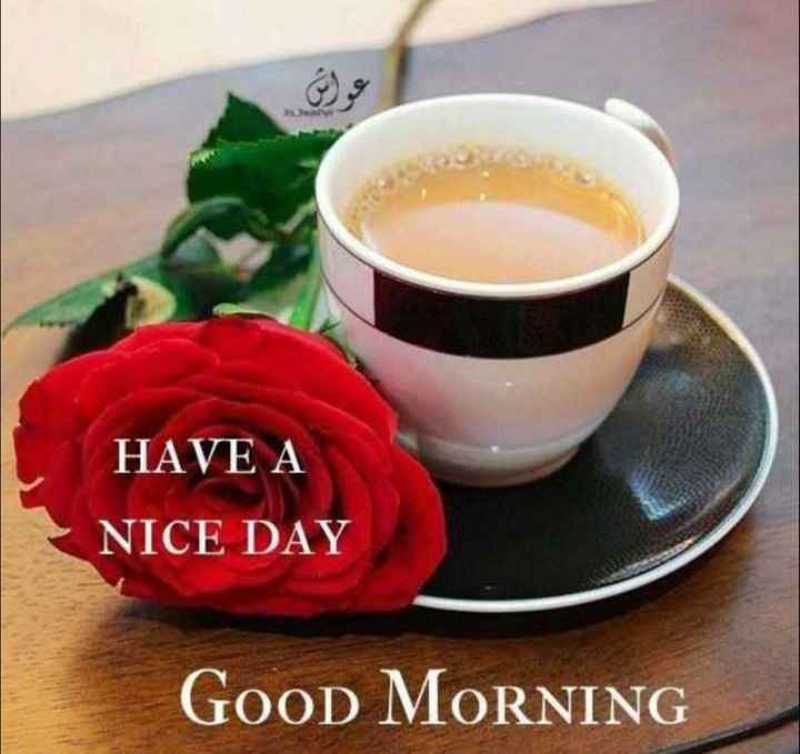🌞 Good Morning🌞 - HAVE A NICE DAY GOOD MORNING - ShareChat