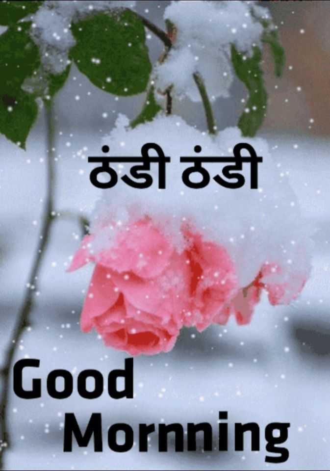 🌞 Good Morning🌞 - ਠੰਡੀ ਠੰਡੀ Good Mornning - ShareChat