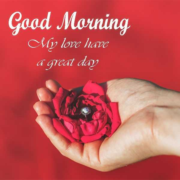 🌞Good Morning🌞 - Good Morning My love have a great day - ShareChat