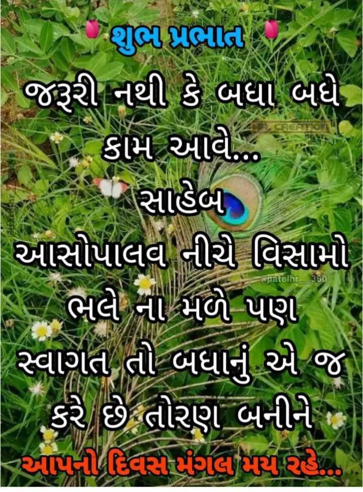 🌅 Good Morning - શુભ પ્રભાત જરૂરી નથી કે બધા બધે . કામ આવે . . . સાહેબ આસોપાલવ નીચી વિસામો ભલે ના મળે પણ ન સ્વાગત તો બધાને એ જ કરે છે તોરણ બનીને જ આપનો દિવસ મંગલ પણ રહે . @ patelnr _ 360 - ShareChat