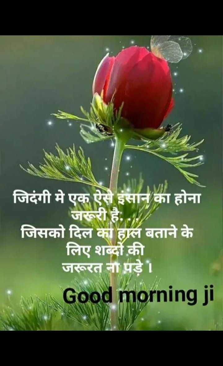 🌞 Good Morning🌞 - जिदंगी मे एक ऐसे इंसान का होना जरूरी है . . . जिसको दिल का हाल बताने के लिए शब्दों की जरूरत ना पड़े । Good morning ji - ShareChat