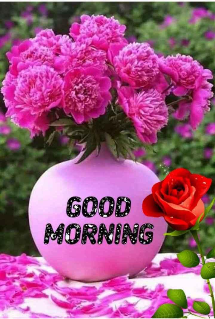 🌞 Good Morning🌞 - GOOD MORNING W 72 - ShareChat