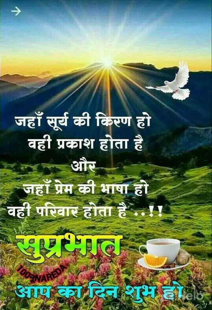 🌞 Good Morning🌞 - जहाँ सूर्य की किरण हो वही प्रकाश होता है टन और जहाँ प्रेम की भाषा हो वही परिवार होता है . . ! ! सुप्रभात । आप का दिन शुभ होहा - ShareChat