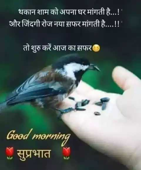 🌞 Good Morning🌞 - थकान शाम को अपना घर मांगती है . . . ! ' और जिंदगी रोज नया सफर मांगती है . . . . ! ! तो शुरु करें आज का सफर Good morning सुप्रभात - ShareChat