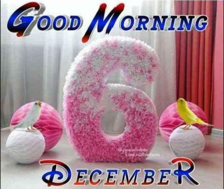 🌞 Good Morning🌞 - GOOD MORNING DECEMBER - ShareChat