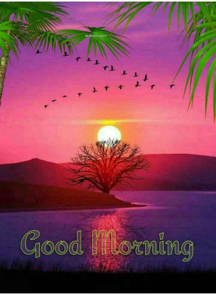 🌞 Good Morning🌞 - Sikander Good Morning - ShareChat