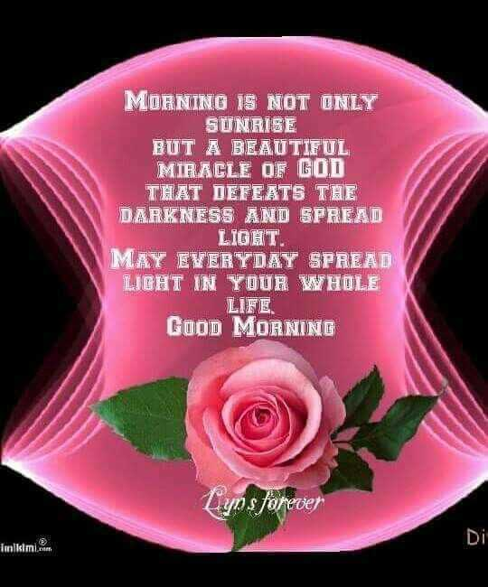 🌞 Good Morning🌞 - MORNINO IS NOT ONLY SUNRISE BUT A BEAUTIFUL MIRACLE OF GOD THAT DEFEATS THE DARKNESS AND SPREAD LIGHT . MAY EVERYDAY SPREAD LIGHT IN YOUR WHOLE LIFE GOOD MORNING Lys forever Twalkimi . - ShareChat
