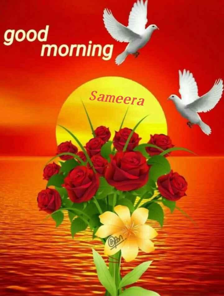 🌞 Good Morning🌞 - good morning Sameera Bank - ShareChat