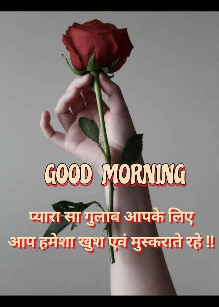 🌞 Good Morning🌞 - GOOD MORNING प्यारा सा गुलाब आपके लिए आप हमेशा खुश एवं मुस्कराते रहे ! ! - ShareChat