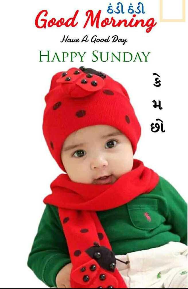 🌅 Good Morning - nin a $ 55l Good Morin Have A Good Day HAPPY SUNDAY G , E - ShareChat