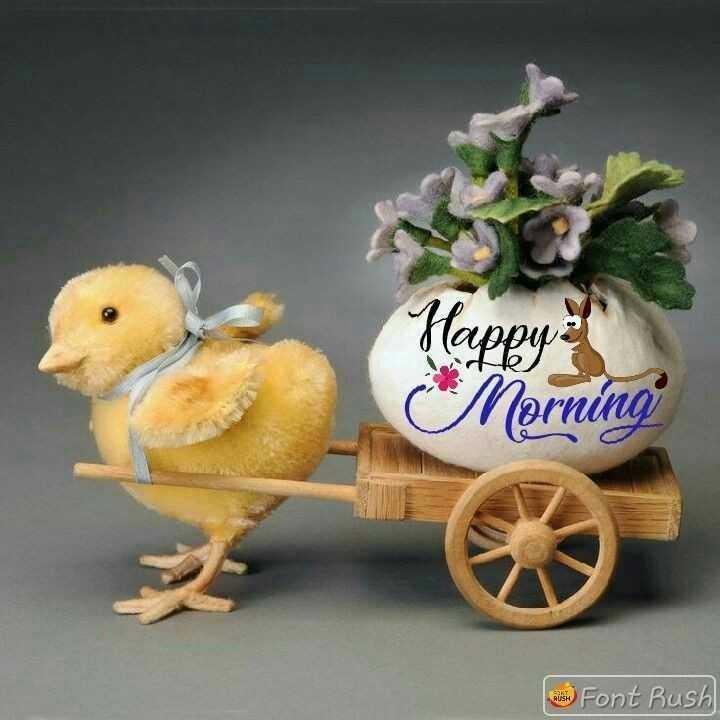 🌞 Good Morning🌞 - Happy i Morning al Font Rush - ShareChat